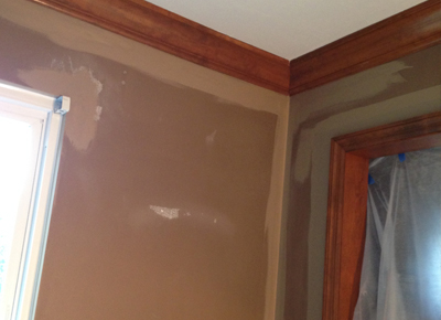 Ceiling Removal & Painting